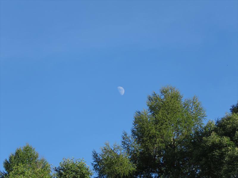 リゾートメンテナンスブログ~昼の月を撮影しました~   長野・蓼科の ...